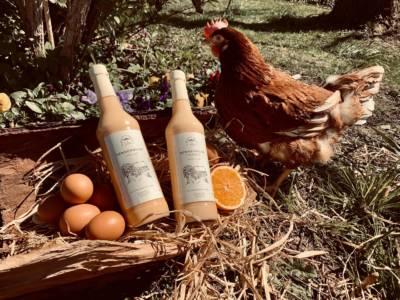 Hennenmilch + Huhn im Garten